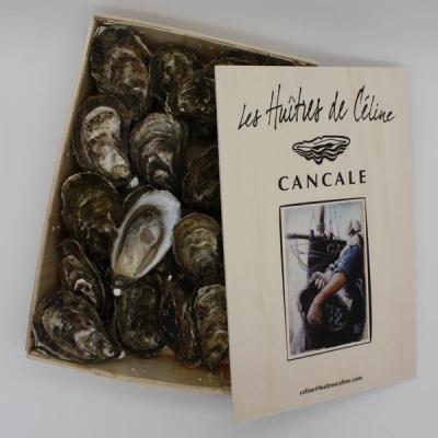 Huître - Cancale n°3
