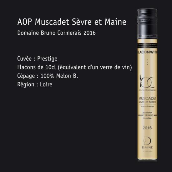 Muscadet - Flacon 10cl