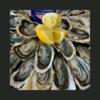 Juste une envie d'huîtres ? (1/2 personnes)