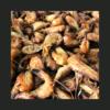 Crevettes grises (200g)