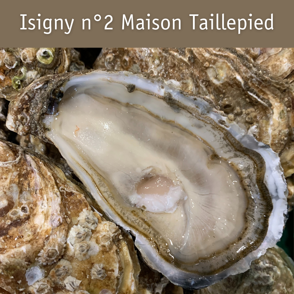100% huîtres (plateau découverte pour 2/4 personnes)